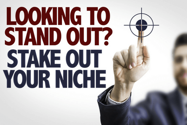 Make Profit From A Niche Website