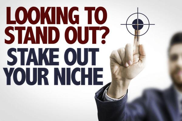 Make Profit From A Niche Website