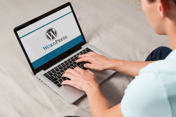 Build Your Store With WordPress